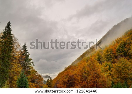 Autumn landscape in cloudy weather.