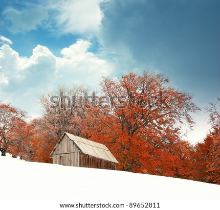 Autumn landscape in mountains. Ukraine, Carpathians