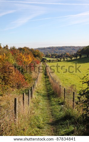 Autumn Landscape in rural England with footpath between tree plantations