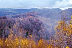 Autumn landscape in the Romanian mountains, Fantanele village area, Sibiu county, Cindrel mountains, Romania