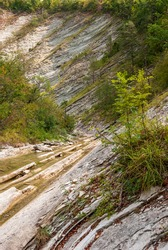 Autumn landscape. Jane riverbed . Krasnodar Territory. Gelendzhik