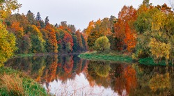 Autumn landscape of colorful trees reflected in the mirrored surface of the calm river on a cloudy day. Trees with orange fall foliage. October scenery. Beautiful scene of the coastline with forest.