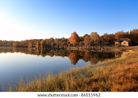 autumn landscape of the lake at morning