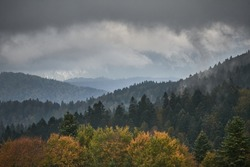 Autumn landscape of the mountains with beautyfully colored forest, ever green pine trees and a stormy sky