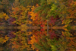 Autumn landscape of the shoreline of Hall Lake with mirrored reflections in calm water, Yankee Springs State Park, Michigan, USA