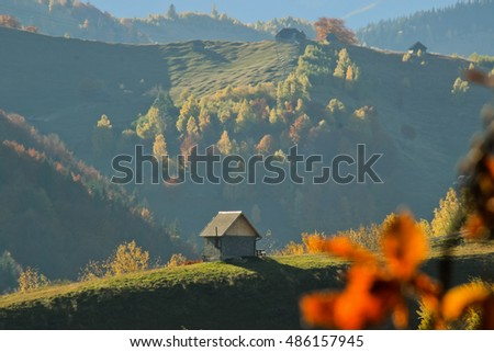 Autumn landscape. own composition . Landscape done in a mountain area .