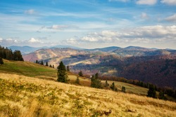 Autumn landscape photo of woods in polish Beskidy mountains, on the path to WIelka Racza.