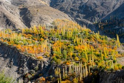 autumn landscape photos with snow mountains and lush green valleys of hunza , gilgit Baltistan