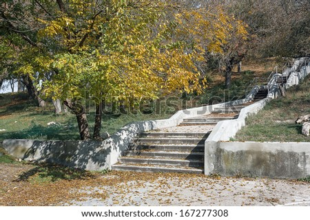 Autumn Landscape, Stairs in a park area, yellowing leaves, sunny weather
