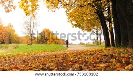 Autumn landscape. The natural background. #733108102