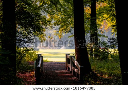 Autumn landscape view of white wooden bridge crossing canal with selective focus, Amsterdamse Bos (Forest) with soft sunlight, Park in the municipalities of Amstelveen and Amsterdam, Netherlands. Stockfoto ©