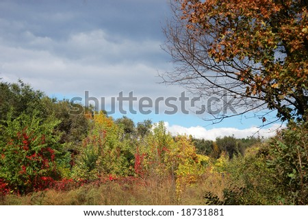 Autumn landscape - weather changing