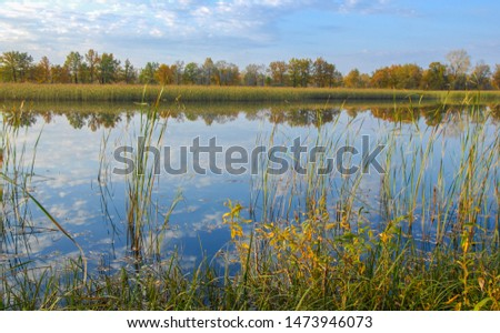 Autumn landscape with a river, The landscape was untouched by an industrial hand, Warm sunlight emanates from the center of the composition and bathes all the work in a welcome glow, #1473946073