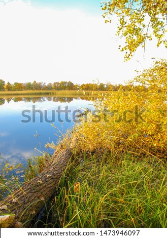 Autumn landscape with a river, The landscape was untouched by an industrial hand, Warm sunlight emanates from the center of the composition and bathes all the work in a welcome glow, #1473946097
