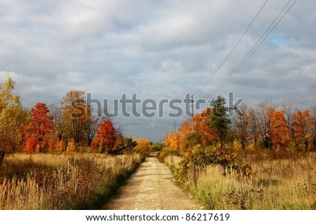 autumn  landscape with countryside road, field and forest