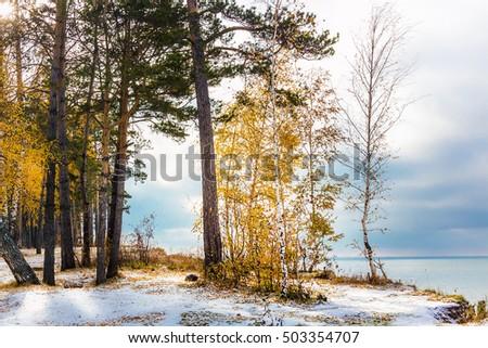 stock photo autumn landscape with first snow the river ob novosibirsk oblast siberia russia 503354707 - Каталог — Фотообои «Новосибирск»