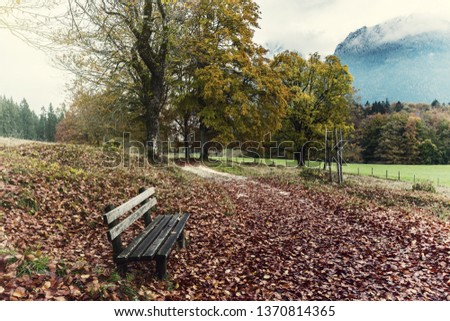 Autumn landscape with lonely bench near road. Beautifull fall trees and mountains in clouds. Vintage stylization, retro film filter