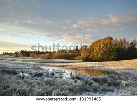 autumn landscape with marshland