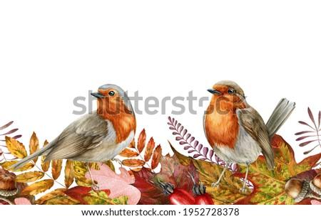 Autumn leaf and robin birds seamless border. Watercolor illustration. Red, orange fallen leaves endless ornament. Backyard robin birds. Bright fall foliage elements seamless border. White background. Zdjęcia stock ©