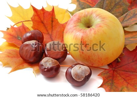 autumn leaf, apple and chestnuts isolated on white background
