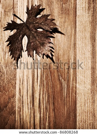 Autumn leaf  border over natural wood background, old dry leaf shape, nature at fall