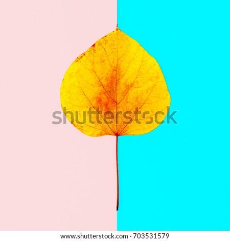 Autumn Leaf Herbarium Minimal art style