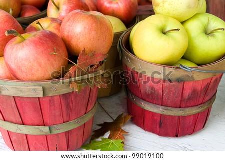 autumn leaf stuck in an apple basket