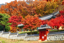 Autumn leave in Korea.Notice means Keep quite because The monks are training.