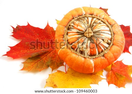 autumn leaves and pumpkin