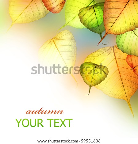 Autumn Leaves.Beautiful Abstract Fall Border - stock photo