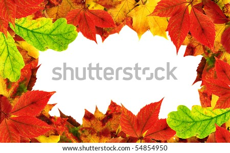 Autumn leaves border frame for your text
