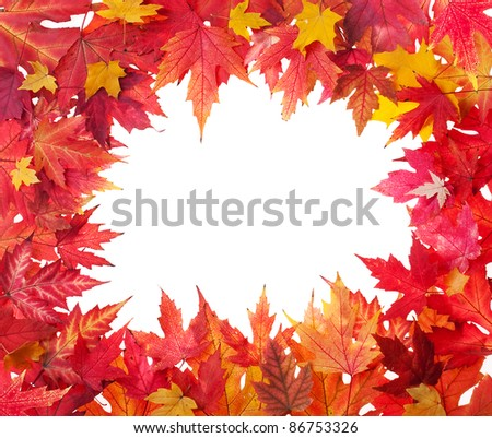 Autumn leaves frame on white background - stock photo
