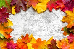 autumn leaves frame over white rustic wooden background. top view with copy space