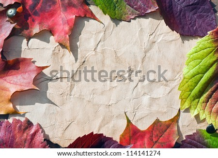 Autumn leaves frame with vintage paper background