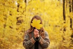 Autumn leaves in girl hands