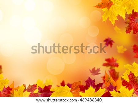 Autumn leaves on a sunny background. Abstract background. #469486340