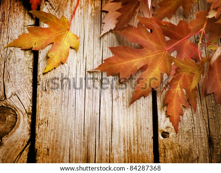 stock photo : Autumn Leaves over wooden background.With copy space