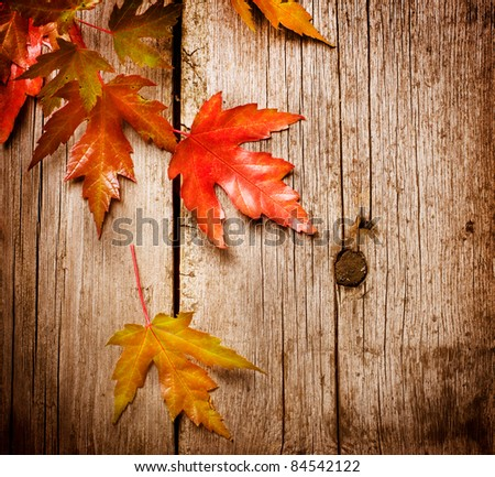 Autumn Leaves over wooden background.With copy space