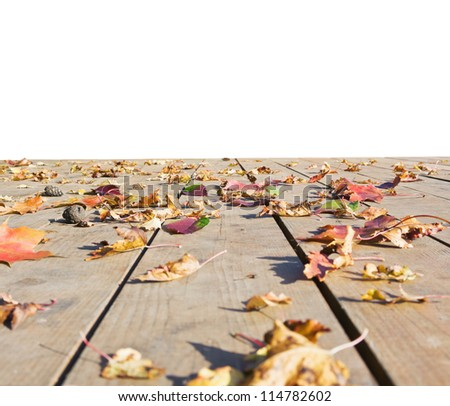 autumn leaves scattered on the wooden floor isolated on white background