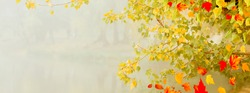 Autumn leaves yellow and red adorn the beautiful nature bokeh background. Wide panorama format.  Copy space on the left. Nature textures and backgrounds. Autumn concept.