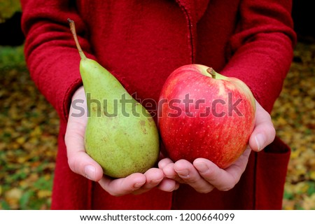 Autumn leaves zholtye hands red apple and green pear coats woman #1200664099