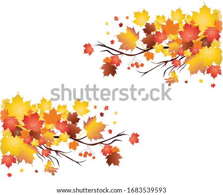 Autumn Maple Leaves in Canada .this Art is design by vishal singh
