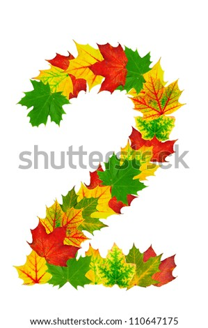 Autumn maple Leaves in the shape of number 2 isolated on white