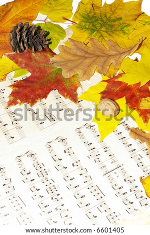 autumn melody