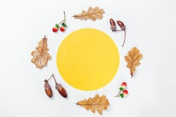 Autumn minimal composition. Wreath of acorns, golden oak leaves and red berries on white background. Yellow circle shape frame mockup for text. Autumn design element. Flat lay, top view, copy space