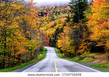 Autumn, Monongahela National Forest, US Route 250, West Virginia, USA Foto stock ©