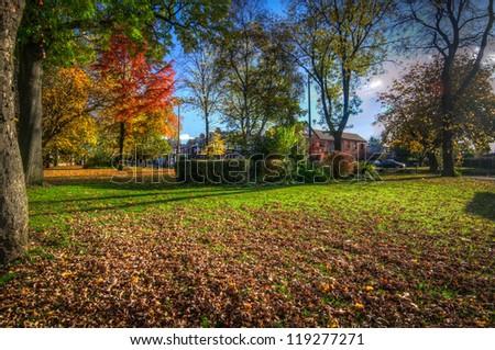 Autumn Monton Green