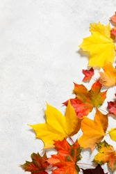 Autumn mood background. Frame made of autumn dried leaves on white background. Autumn, fall, thanksgiving day concept. Flat lay, top view, copy space
