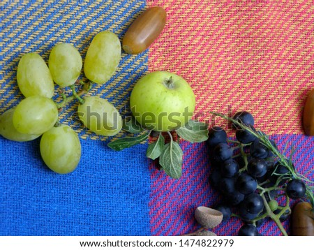 Autumn mood. Warm autumn on a picnic coverlet. Delicious and healthy autumn fruits:  grapes, apple. #1474822979