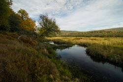 Autumn Morning in Canaan Valley State Park, WV